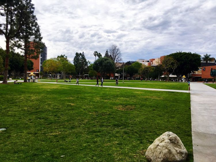Gobeach CSULB Campus Campuslife Aynaphotography Great View Niceweather Love Blue Sky And Clouds Trees