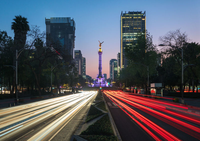 High speed traffic, Mexico City long exposure shot on Paseo de la Reforma with a view on Angel de la Independencia Angel De La Independencia Blue Hour El Ángel De La Independencia Mexico Morning Architecture Building Exterior City Dusk High Street Illuminated Light Trail Long Exposure Motion No People Outdoors Paseo De La Reforma Speed Transportation Travel Destinations Tree Mobility In Mega Cities