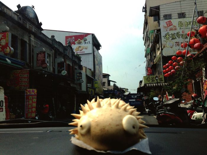 帶著刺蝟逛大街 Enjoying Life 高雄市 Kaohsiung City Check This Out