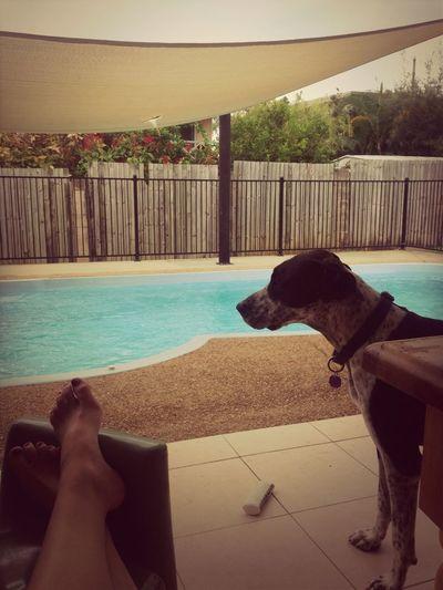 Sunday Swimms
