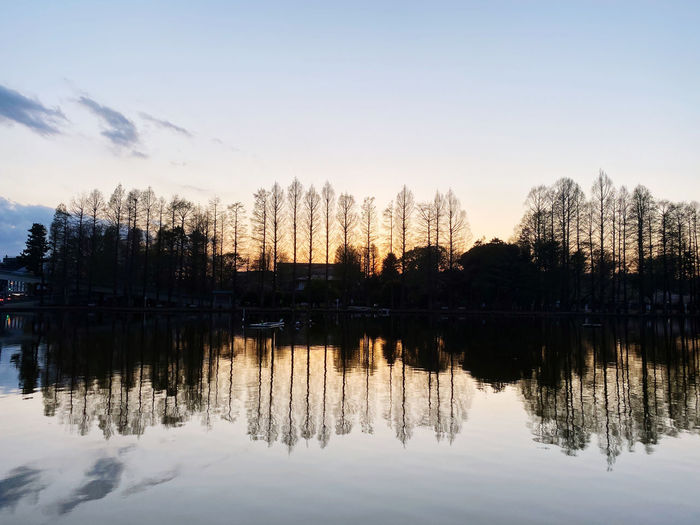 Reflection of trees in lake during sunset