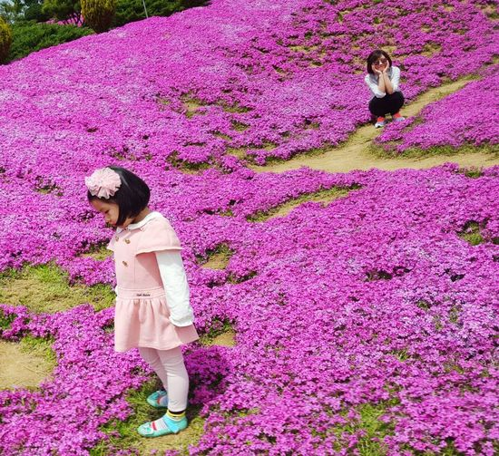 Girl on pink flowers