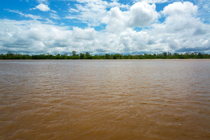 View of the wide muddy Amazon River as it slowly passes through Peru Adventure Amazon Amazonas Amazonia Background Flood Flooded Forest Green Iquitos  Iquitos, Perú Jungle Lake Nature Park Peru Rainforest Reflection River South America Travel Tree Tropical Vacation Vines