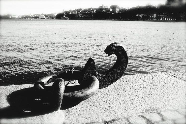 Taking Photos Check This Out Black & White
