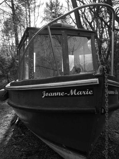Withdrawn Luke Jerram Boat Woods