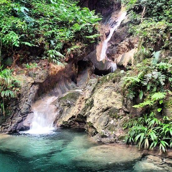 Yurubi National Park beautiful place....! Yaracuy Place River Venezuelanatual