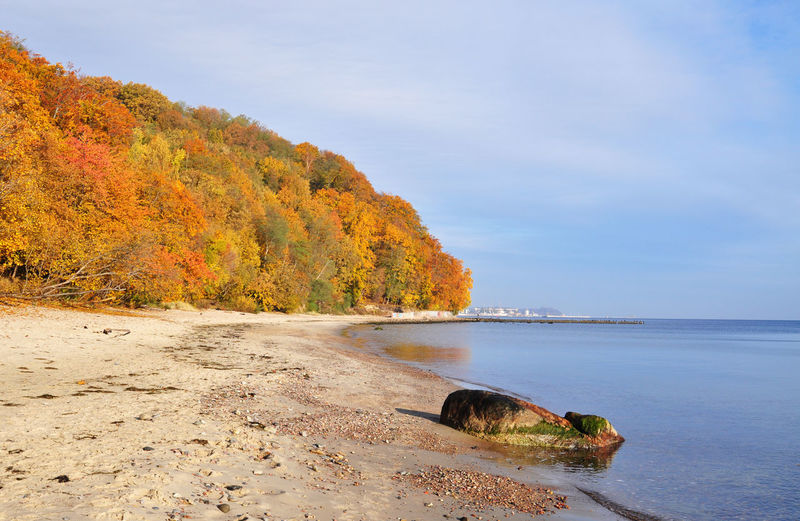 autumn on the baltic sea in Poland Autumn Colour Of LifeBaltic Beautiful Beauty In Nature Coast Color Colorful Outdoors Poland Sand Sea Seascape Seaside Season  Shore Sky Water Color Of Life Tranquility Tranquil Scene Colors Of Autumn Tree