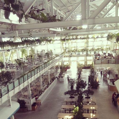 喜歡這的空間感 開放 通透 綠意盎然 ??