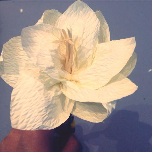 Flower I Love My King