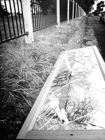 Fenceline Broken Mirror