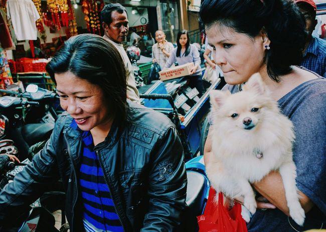 Stand Out From The Crowd Streetphotography Wirokesuma Dog Doggy 28mm Wirokesuma