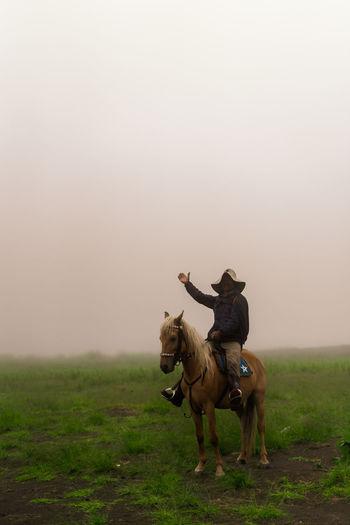 Full length of man sitting on horse