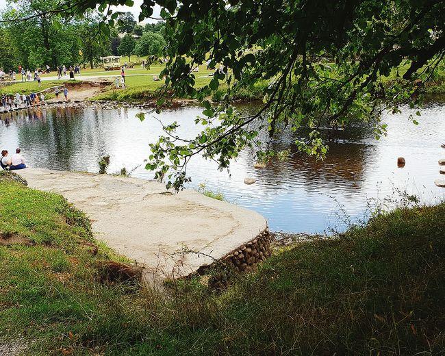 river Bolton Abbey stepping stones Skipton Uk Bolton Abbey Summer 2018 Sunshine Heatwave EyeEm Selects Landscape Scenics - Nature Scenic Scenery Shots Water Tree Puddle Lake Reflection Close-up EyeEmNewHere