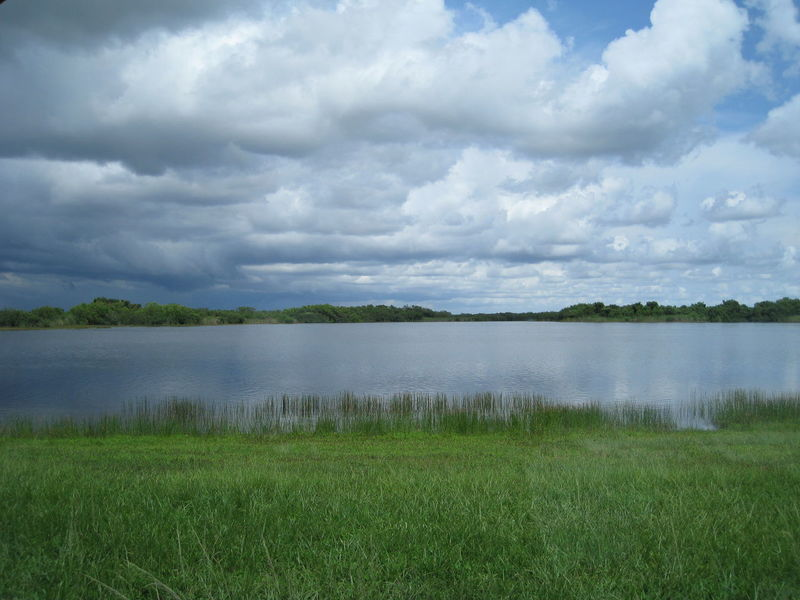 National Park Beauty In Nature Cloud - Sky Day Everglades  Field Grass Green Color Idyllic Lake Landscape Nature No People Outdoors Scenics Sky Tranquil Scene Tranquility Water