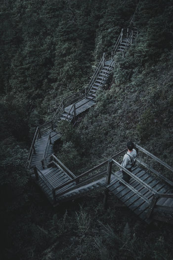 My Best Photo Architecture Nature Real People Men Sitting Tree Day Outdoors Forest Staircase Railing Plant Connection Footbridge Full Length High Angle View One Person Steps And Staircases Leisure Activity Built Structure EyeEm Best Shots EyeEm Selects EyeEm Nature Lover Beauty In Nature