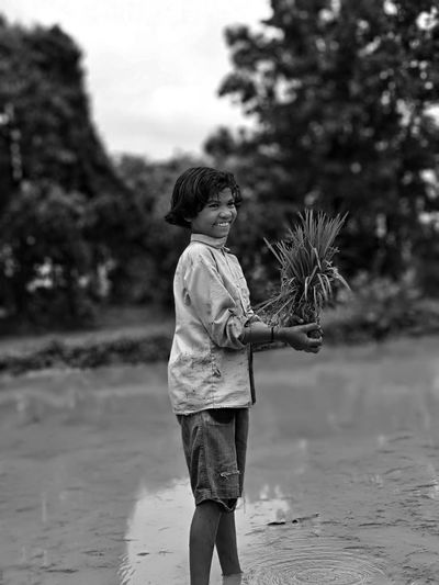 Boy Holding Crop While Standing Against Rice Paddy