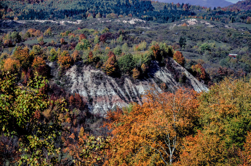 Autumn Collection Autumn Colors Autumn🍁🍁🍁 Foresthills Holidays Relaxing Time Sky_collection The Carpathian Hills How Do You See Climate Change?
