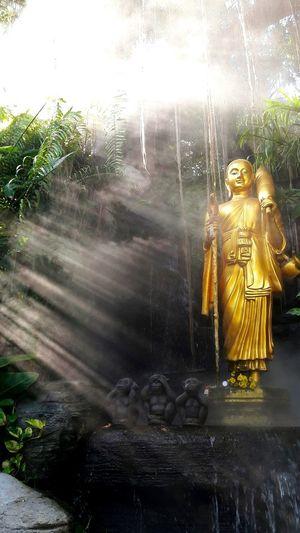 曼谷金山寺