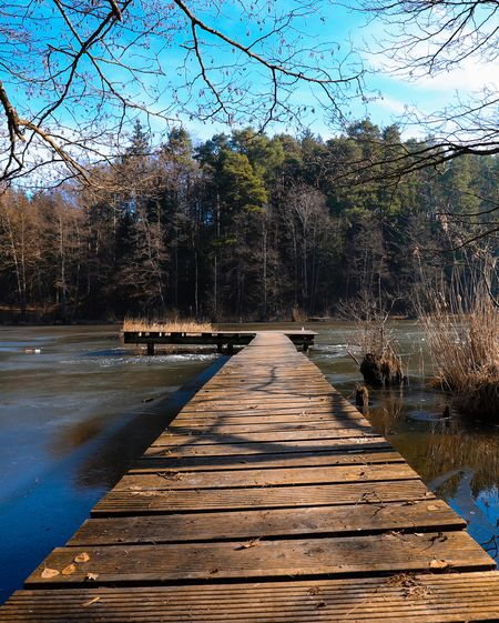 Empty footpath by lake in forest against sky