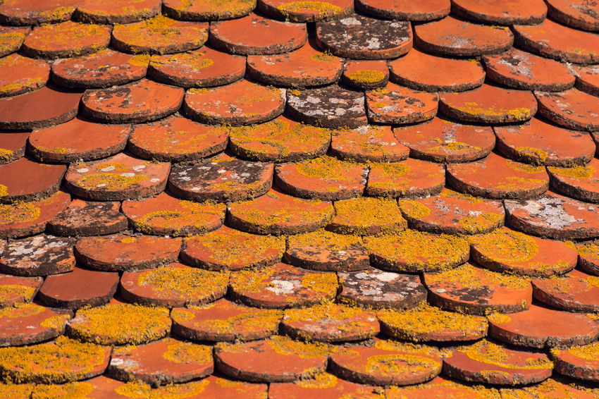 Old church roof tiles Full Frame Backgrounds No People Pattern Textured  Geometric Shape Shape Outdoors Repetition Yellow Arrangement Stone Material Roof Tile Ceramics Ceramic Tiles Red Textures and Surfaces Church Day Light And Shadow Contrast Colors Warm Clothing Large Group Of Objects Roof