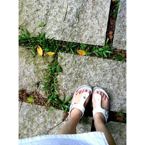 今天出去晃悠了一圈哈哈 Holiday Hot Summer On The Road My Shoes