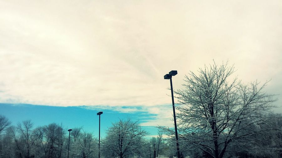 Sky And Clouds Snowy Trees Parking Lot Art Lightpost Blue Sky White Clouds
