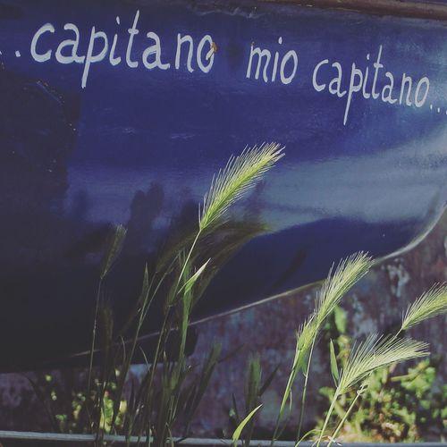 PhotoFeliceSo My Favorite Photo Boat Muggia Trieste Citazioni