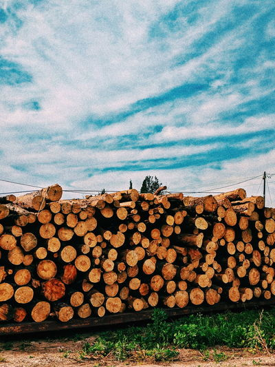 Abundance Cloud - Sky Day Deforestation Environmental Issues Firewood Forest Fuel And Power Generation Heap Large Group Of Objects Log Lumber Industry Nature No People Outdoors Sky Stack Timber Tree Wood Wood - Material Woodpile