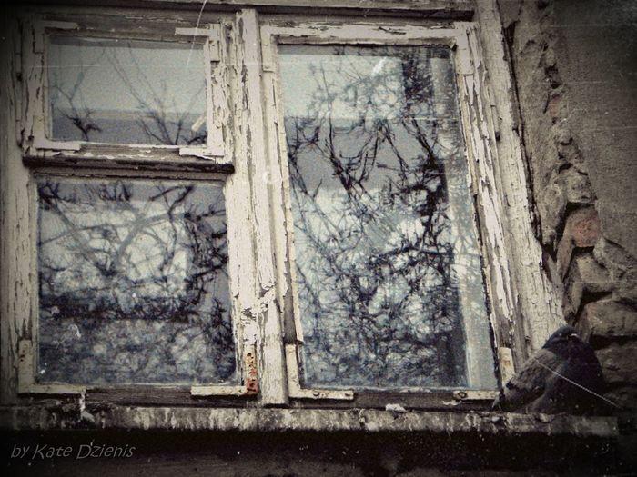 Old, abandoned...but so safe to rest.
