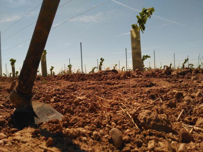 View of shovel in soil