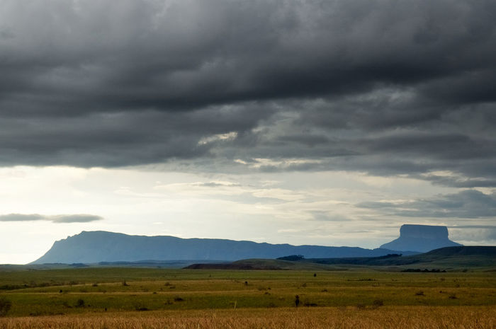 La Gran Sabana Beauty In Nature Cloud - Sky Day Environment Field Land Landscape Mountain Nature No People Non-urban Scene Ominous Outdoors Overcast Plant Scenics - Nature Sky Storm Storm Cloud Tepuy Tranquil Scene Tranquility