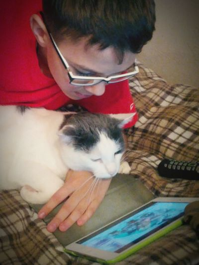 Cat Children Home Sweet Home Learning Apple Gadgets Check This Out Enjoying Life