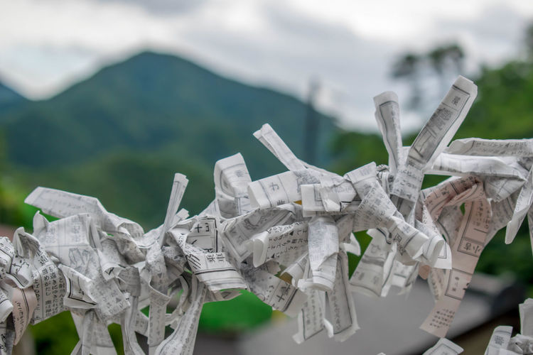 Close-up of folded papers hanging outdoors