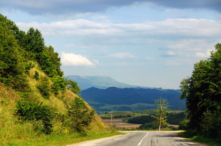 Tree Road The Way Forward Mountain Cloud - Sky Outdoors Day Nature No People Pinaceae Transportation Forest Landscape Scenics Beauty In Nature Sky Winding Road Mountain Road Mountain Range Car Trip Car Travel Highway Travel Destinations Green Hill Vacations