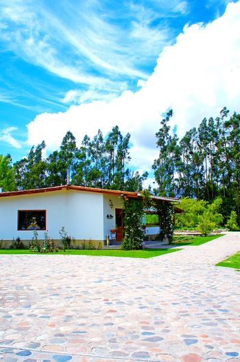 🌿Hotel restaurant☁️ Tree Building Exterior Sky Outdoors Cloud - Sky Nature EyeEmNewHere Hotel Country Laviniafenton Peruvian Landscape Travel Destinations Ensenada Cajamarca-Perú Beauty In Nature Tranquil Scene Nature Green Color