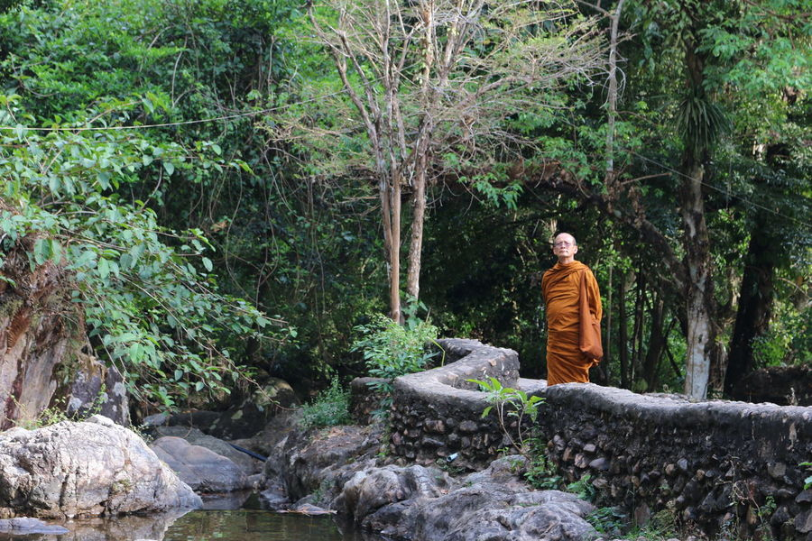 Adult Adults Only Buddist Buddist Monk Day Full Length Nature One Man Only Human Body Part Adult Indoors Human Eye Human Hand Day One Person One With Nature Only Women Outdoors Peace People Serenity Spirituality Thai Monk Tree