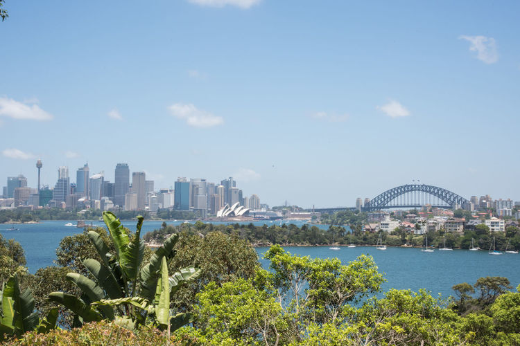 Sydney, New South Wales/Australia-December 21,2016: View over the urban skyline and harbour with the Sydney Opera House with the Sydney Harbour Bridge in Sydney, Australia Architecture City Cityscape Nature Water Parramatta River Skyline Sydney Landmark New Shoes Building Exterior Urban Skyline Travel Destinations Office Building Exterior Skyscraper Bridge - Man Made Structure Financial District  Modern Bridge Landscape Sydney Opera House Sydney Harbour Bridge Sailboat Nautical Vessel Transportation