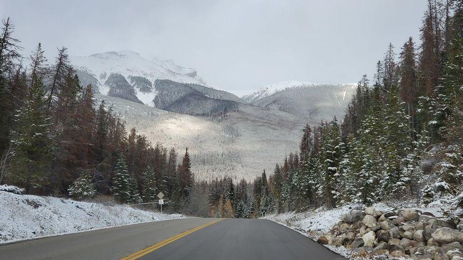 road trips in