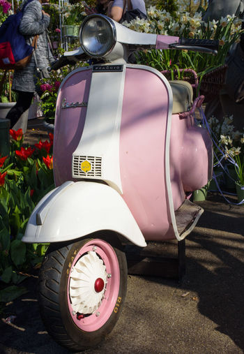 Amazing Colors Day Garden Holland Keukenhof Keukenhof Garden Mode Of Transport No People Old Old Vespa Outdoors S Transportation Tulips🌷 Vespa Vintage