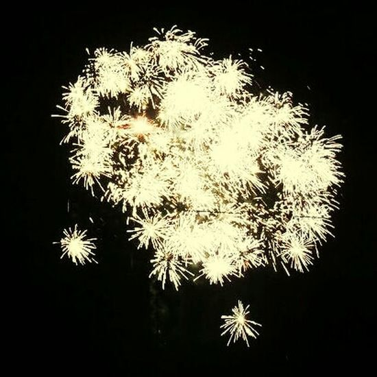 Happy new year! Fireworks Celebration The Purist (no Edit, No Filter) EEFirst