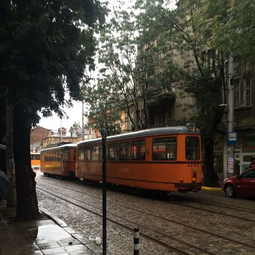 This is a working trolley car, not in a museum. Sofia Sofia, Bulgaria Bulgaria