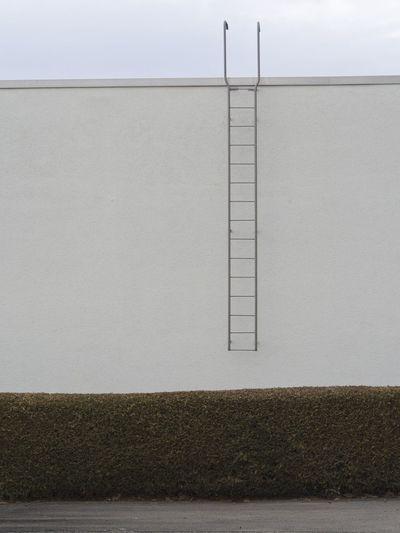 Hedge Ladder Minimal Minimalism Minimalist Architecture Minimalobsession No People Simplicity Urban Geometry Urban Photography Wall - Building Feature