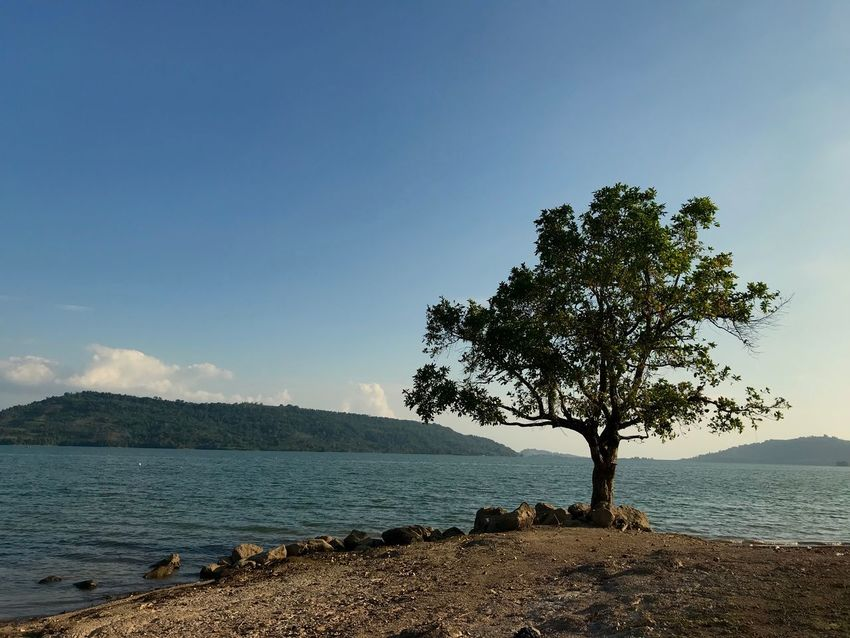 a peacefull place Wonderful Indonesia Life Simple Sand Nature Hill Peaceful View Blue Sky Sky Water Tree Sea Beauty In Nature Tranquility Plant