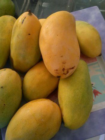 Mango, The King Of Fruit