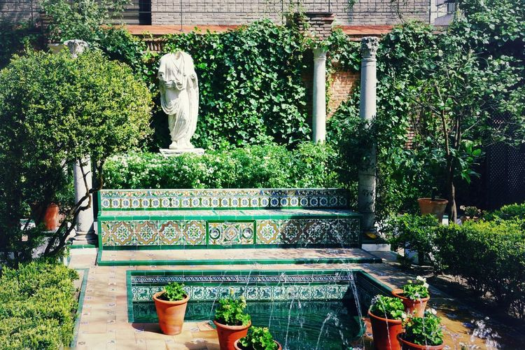 SPAIN Madrid Madrid Spain Spanish Courtyard  Fountain Flowers,Plants & Garden Garden Potted Plant Column Decoration Tile Ceramic Tiles Ceramics Statue Museum Sorolla Tourist Attraction  Calmness Relaxing Time Summertime Sunny Day Tree Greenhouse Plant Backyard Domestic Garden Ivy Growing Potted Plant