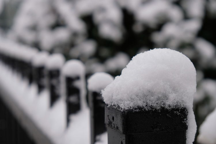 Snow, snow on the railing Cold Temperature Day Focus On Foreground Nature No People Outdoors Snow Winter