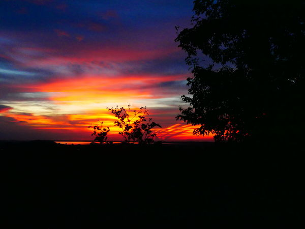 sunset in phnom bakheng,cambodiaCambodia Siem Reap Travel Traveling Angkor Beauty In Nature Landscape Nature No People Orange Color Phnom Bakheng Scenics Silhouette Sky Sunset Temple Tree EyeEmNewHere Lost In The Landscape