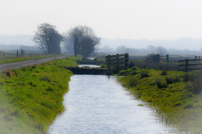 Rural Scenes Somerset Levels Uk Springtime Natures Beauty Water Tree No People Sky Outdoors River Travel Destinations Day