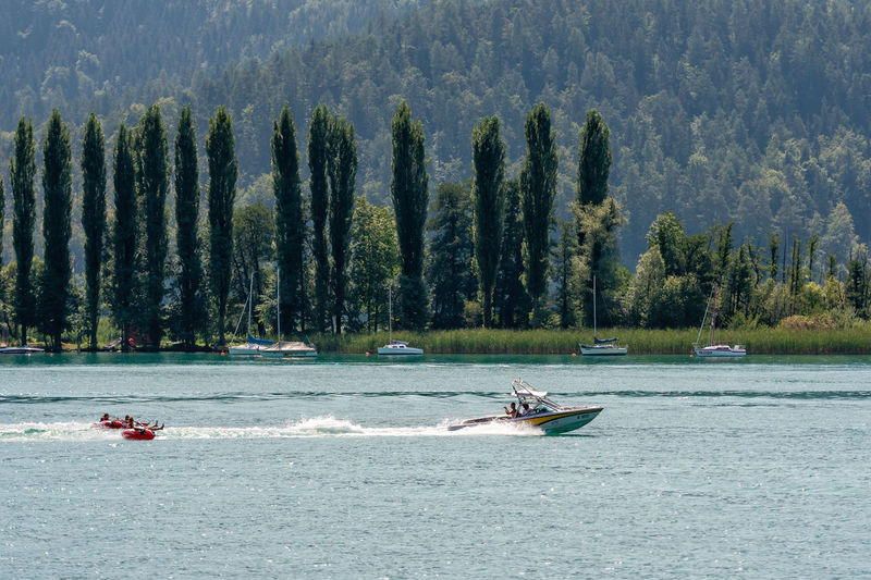 WORTHERSEE, AUSTRIA - AUGUST 08, 2018: Happy young people, on inflatable attractions, drive behind a motorboat on the lake. Nature Day Outdoors Austria Carinthia Carinthian Lakes Tourist Tourists Lake Wörthersee Recreation  Leisure Landscape Water Sea Boats Motorboat Speedboats Summer People Holidays Fun Travel Beach Resort Lifestyle Sunny Rest Joy Waves Europe Alps Alpine Alpine Lake Tree Nautical Vessel Plant Transportation Real People Waterfront Mode Of Transportation Beauty In Nature Men Leisure Activity Growth Motion Scenics - Nature Lifestyles Incidental People Forest Inflatable