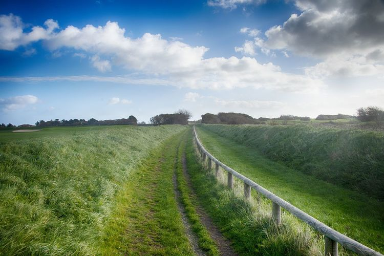 Sylt, Germany Sky Landscape Environment Cloud - Sky Land Plant Field Grass Tranquil Scene Tranquility Scenics - Nature Beauty In Nature Green Color Nature No People Day Non-urban Scene Direction The Way Forward Footpath Outdoors Trail Long